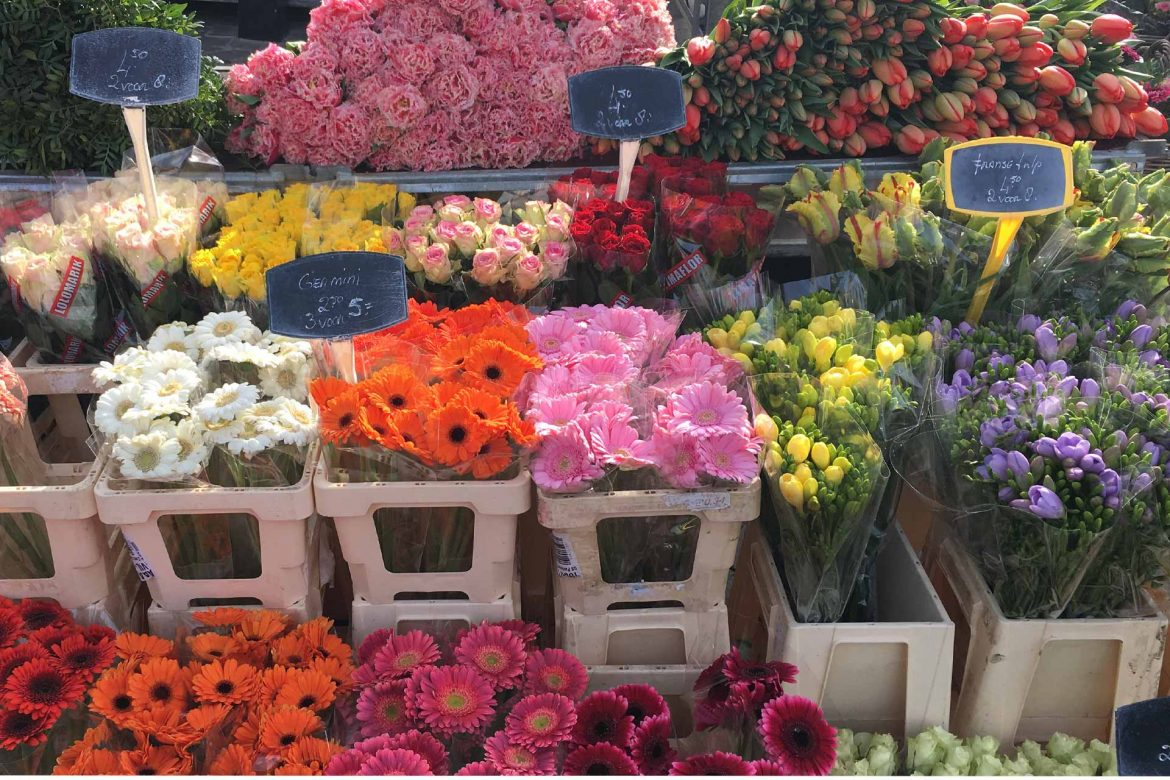 The Flower Market in Maastricht